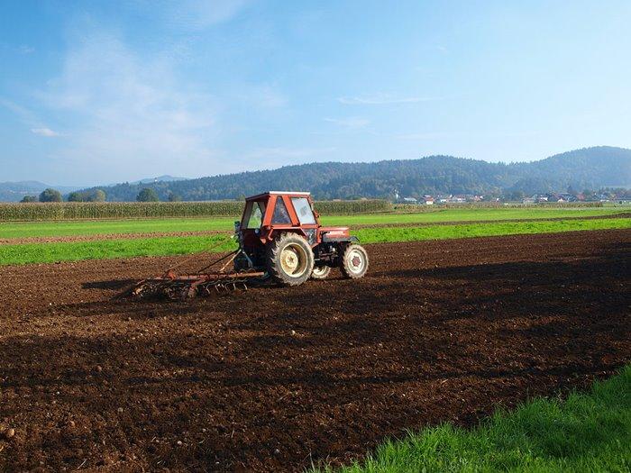 njiva poljoprivreda.jpg