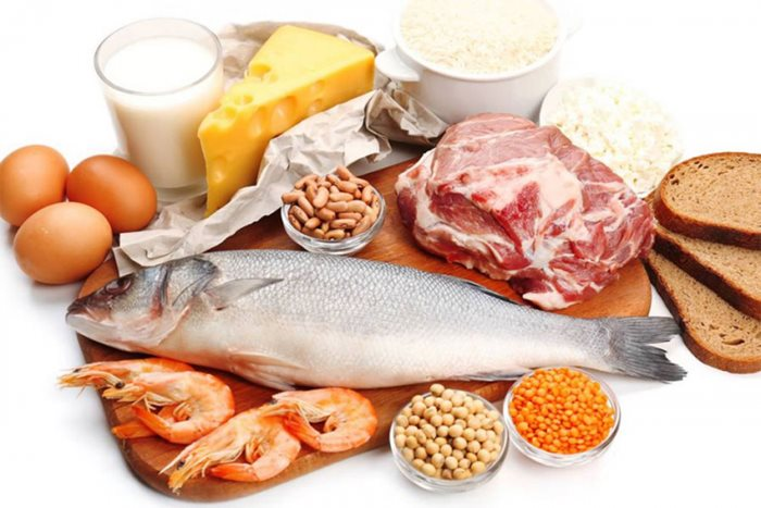 hrana proteini.jpg