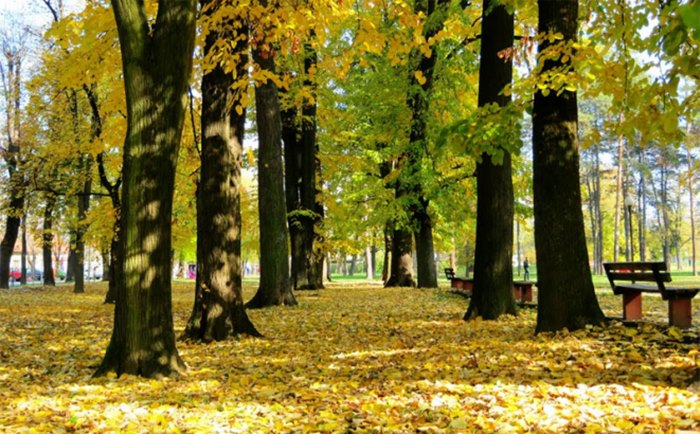 jesen vrijeme.jpg