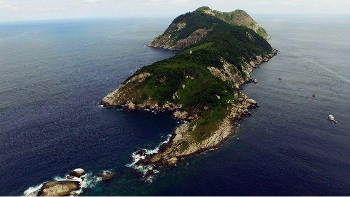 ostrvo zlatne zmije.jpg