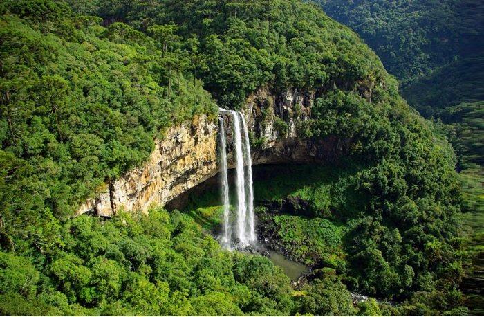 ostrvo zmija brazil.jpg