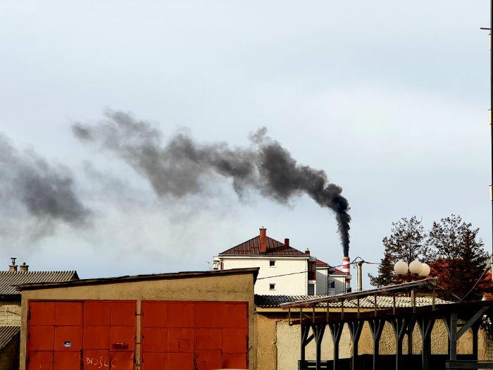 Gacko dim.jpg