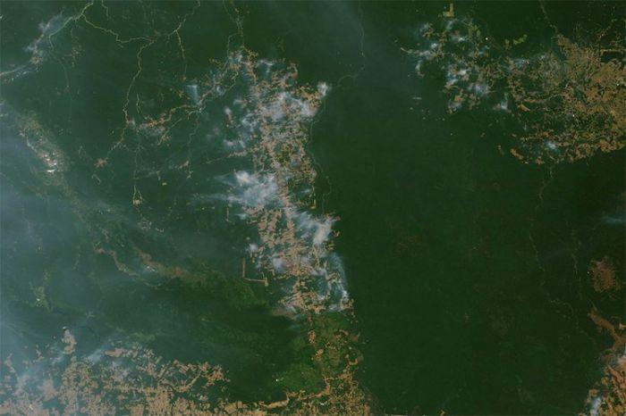 Amazon NASA.jpg