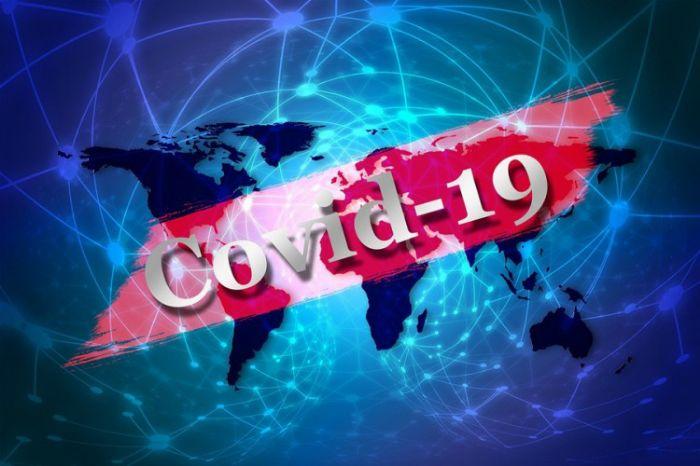 Virus corona covid 19.jpg