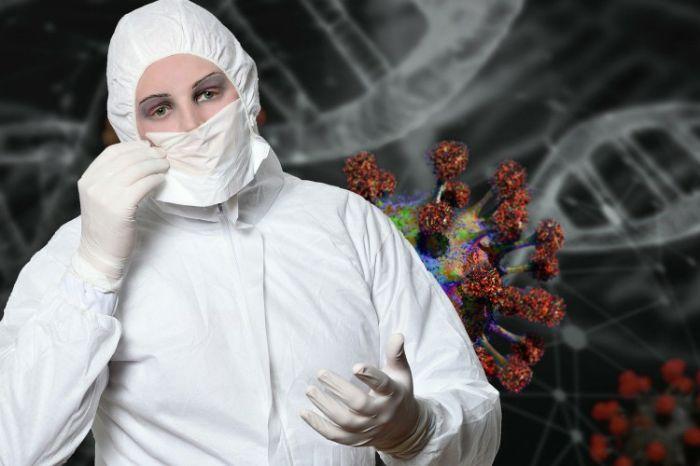 Korona virus 3.jpg
