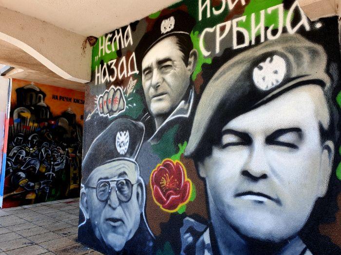 Vidovdanski mural tini3.jpg