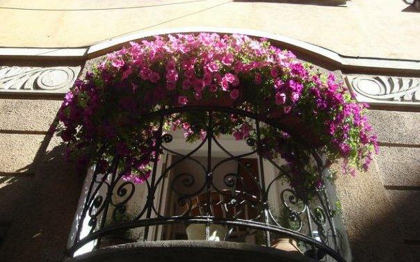 konkurs za najljepse dvoriste, balkon i javnu povrsinu