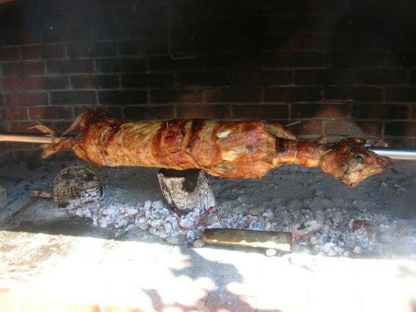 peceni brav jagnje