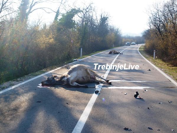 saobracajna nesreca duzi
