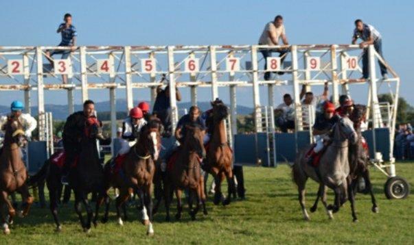 konjske trke nevesinje olimpijada 2014