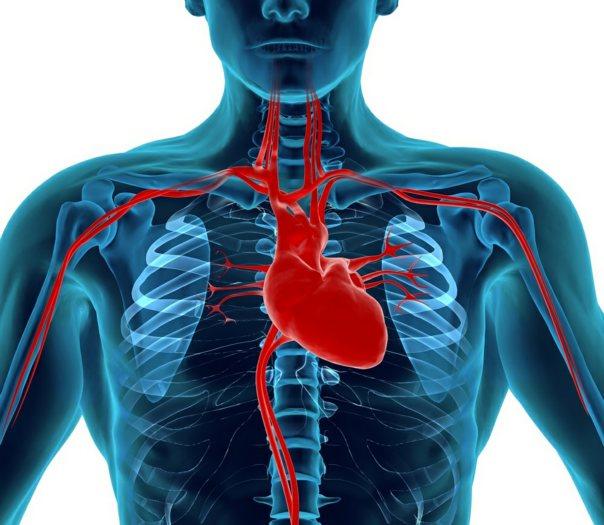 transplantacija mrtvog srca