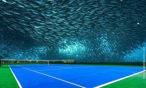 tenis pod vodom dubaji