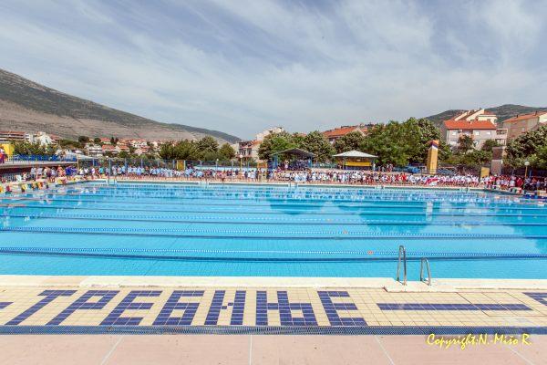 skola plivanja plivacki klub leotar
