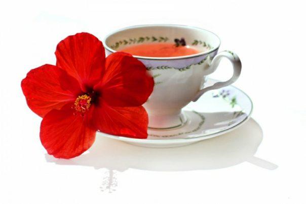 caj od hibiskusa snizava krvni pritisak recept