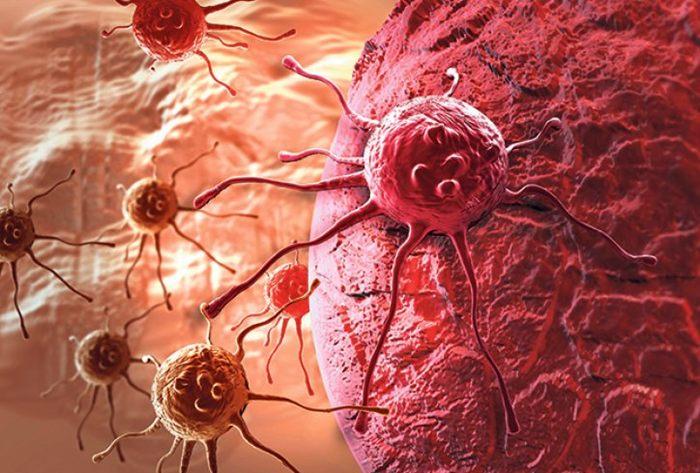 celije raka lijek