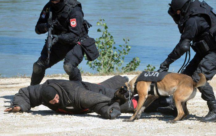 zdruzena vjezba policija srpske i srbije