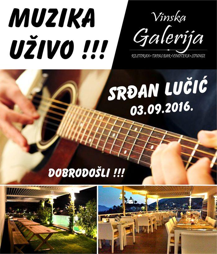 Galerija - Srdjan Lucic