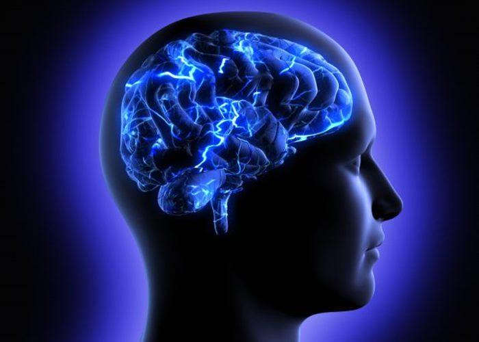 mozak pamet