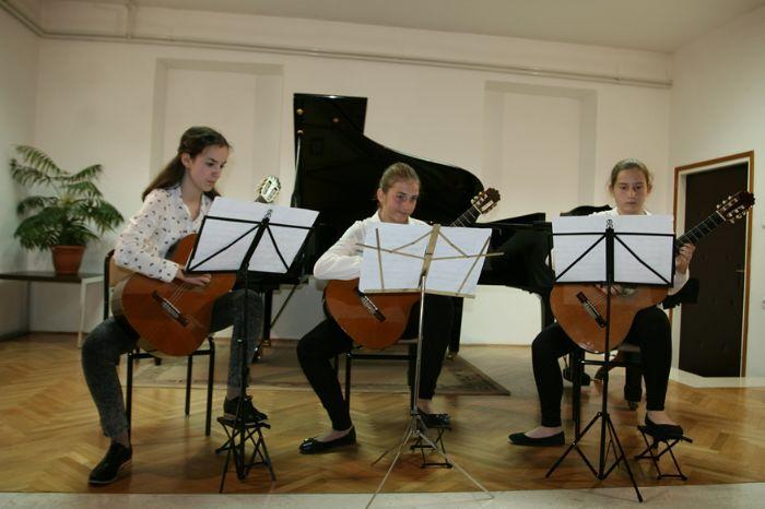 Muzicka skola koncert