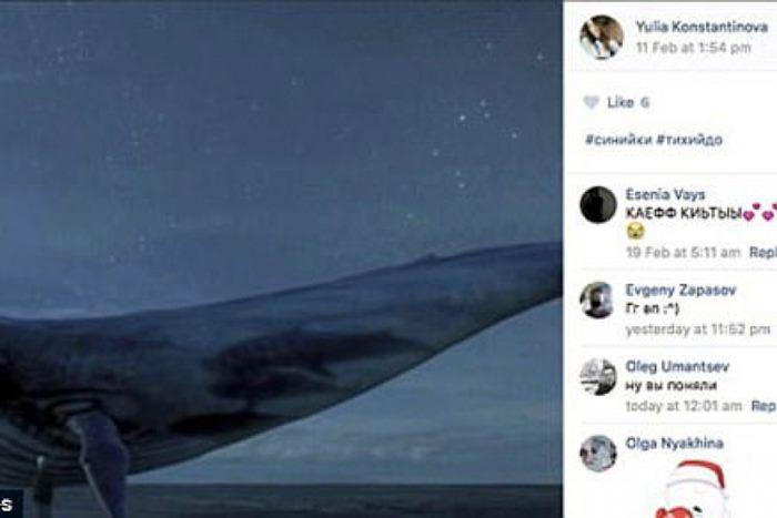 igrica izazov plavog kita (1)