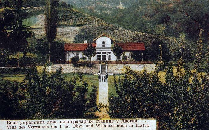 carski vinogradi zilavka